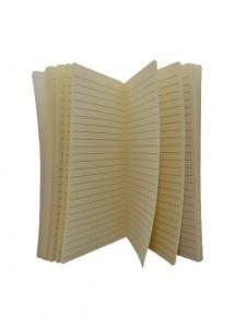 Caderneta grande tipo moleskine, com capa plástica.